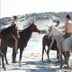 Formule : 4 saisons de cheval en Corse