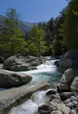 Vallée de la Restonica (corsica)